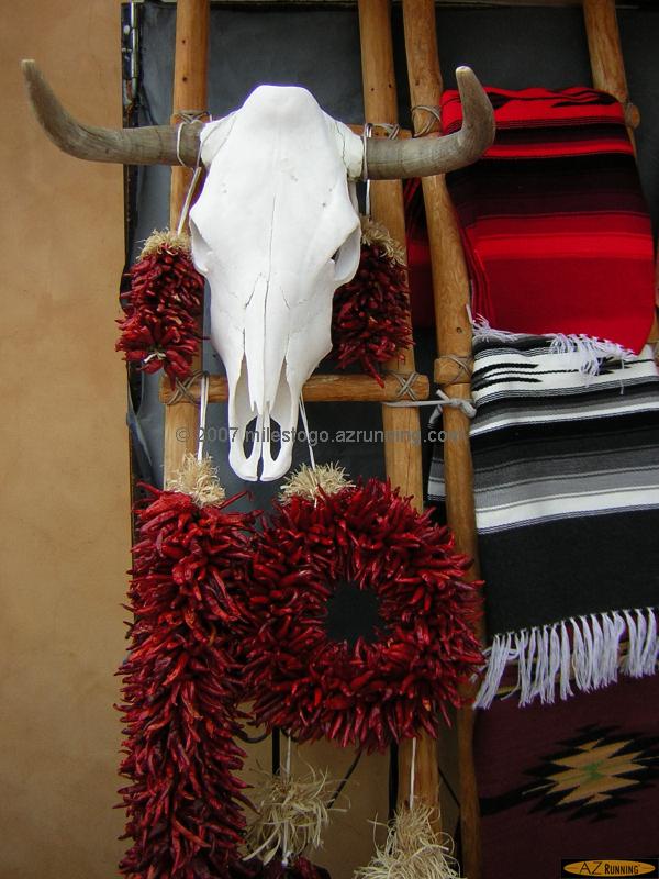New Mexico Symbols